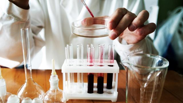 Аналіз крові: розшифровка і норма. Загальний аналіз крові: розшифровка аналізів дорослого і дитини.