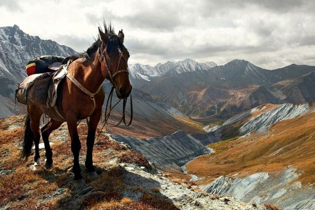 Гірський Алтай: куди поїхати? Вибір туристичного маршруту