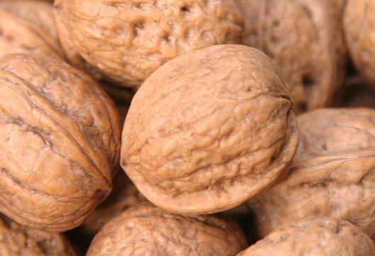 Волоський горіх: користь і шкода