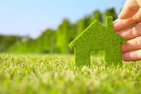 Екологія в побуті для здорового життя - поради щодо створення екології Вашого будинку