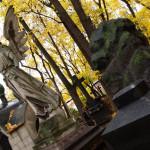 Як часто і коли потрібно і можна їздити на кладовища до близьких?