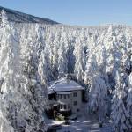 Як цікаво відзначити Новий рік у Фінляндії 2013?