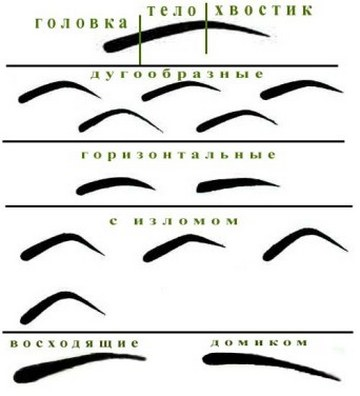 Як підібрати форму брів?