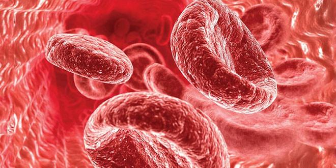Низький гемоглобін у вагітних - причини, ступеня залізодефіцитної анемії при вагітності