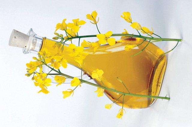Рапсове масло: шкода і користь