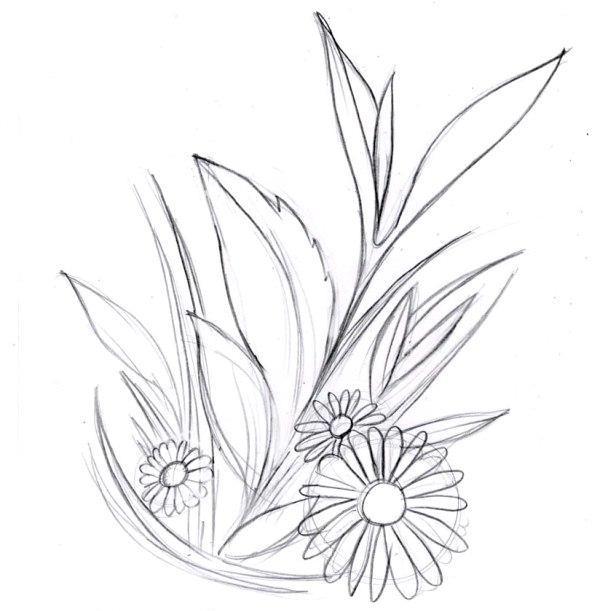 Малюємо квіти олівцем поетапно. Вибір малюнка, техніка роботи і поради для початківців