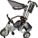 Триколісний велосипед Mini Trike