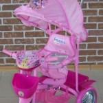 Триколісний велосипед Принцеса 108S2C