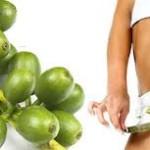 Зелена кава для схуднення - реальні відгуки. Чи варто купувати зелену каву?
